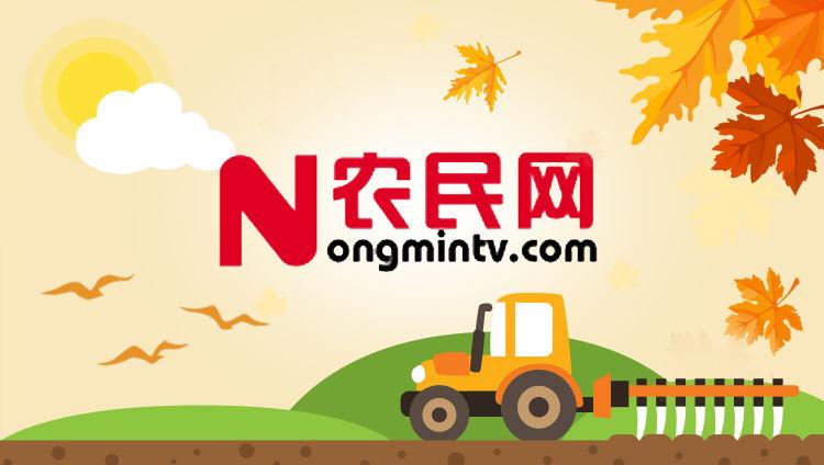 河北农民频道
