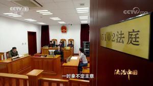 《法治中国》第四集公正司法(上)