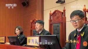 《法治中国》第五集公正司法(下)