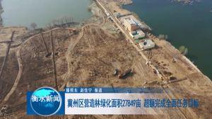 冀州区营造林绿化面积27849亩  超额完成全面任务目标