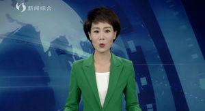 """武强县:""""政策+服务""""组合拳  全力支持外贸企业渡难关"""