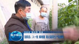 饶阳县:入一线 解难题 稳定蔬菜生产保增收